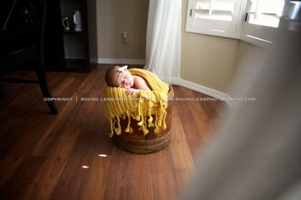 colette patterson newborn 4