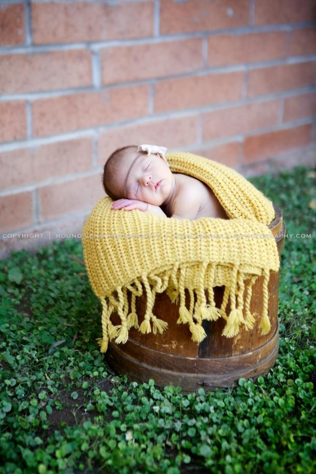 colette patterson newborn 5