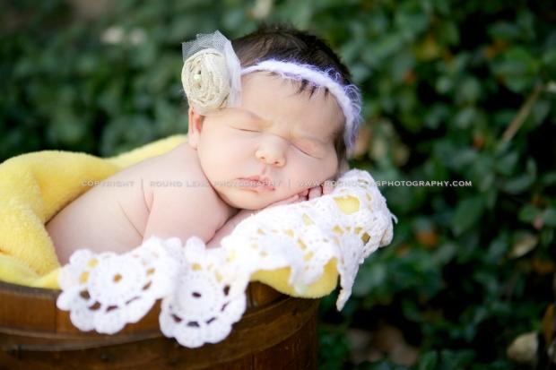 molly taziolli newborn 4