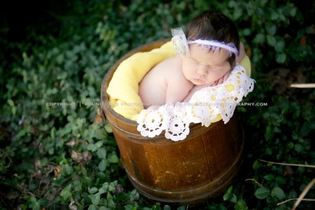 molly taziolli newborn 7