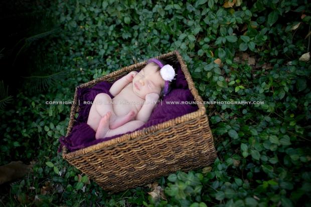 molly taziolli newborn 8