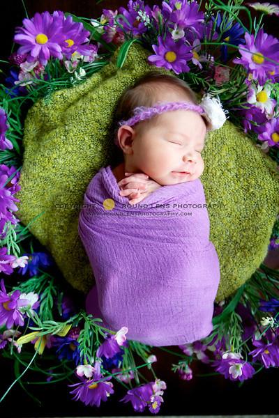 Alyssa Newborn 62-L